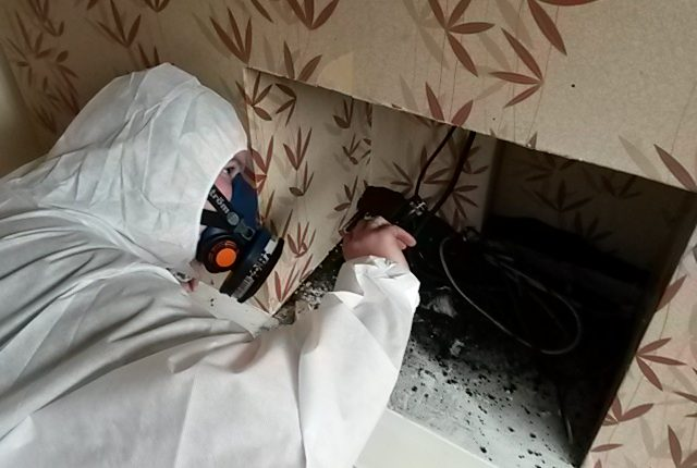 Reinspection Survey for the Presence of Asbestos0